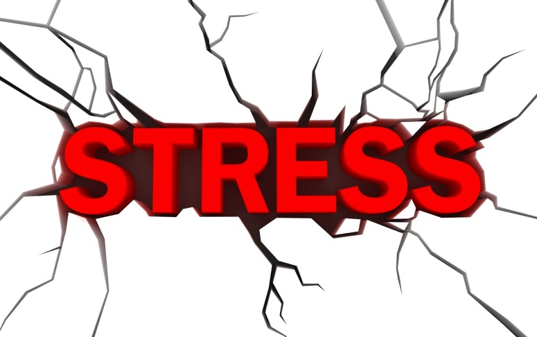 Stress or Anxiety