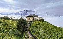220px-Cherry_Resort_inside_Temi_Tea_Garden,_Namchi,_Sikkim