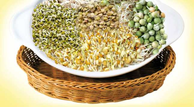Avoid raw sprout during pregnancy