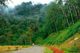 road_to_ravangla1