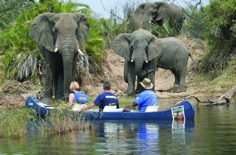 Canoe Safari Zambia