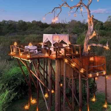 Kruger South Africa 5