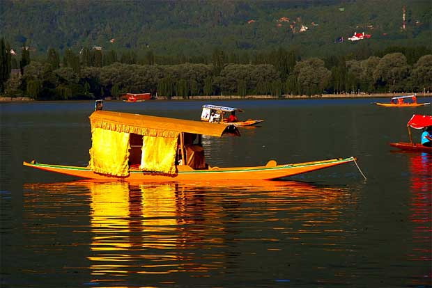 dal lake shikara heavenly place